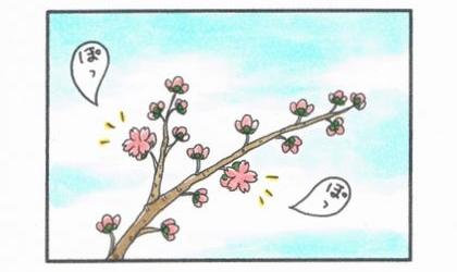 桜がぽつぽつと咲き出した