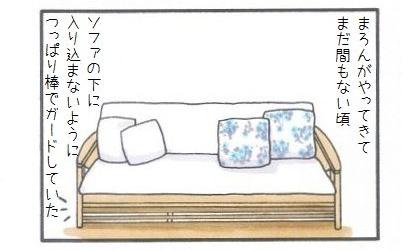 マジシャンまろん-1
