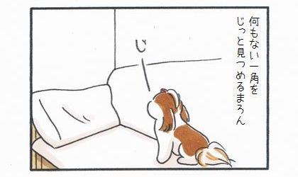 リビングの何もない一角をじっと見つめる犬