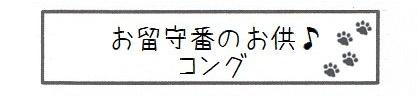 お留守番のお供♪コング-0