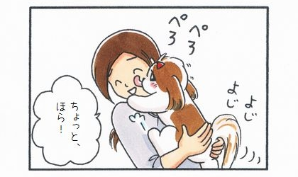 犬が飼い主によじ登って顔を舐める。ちょと、ほら!注意しつつももうれしそうな飼い主