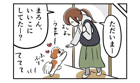 ただいまー、いいこにしてたー?帰宅した私に駆け寄る犬