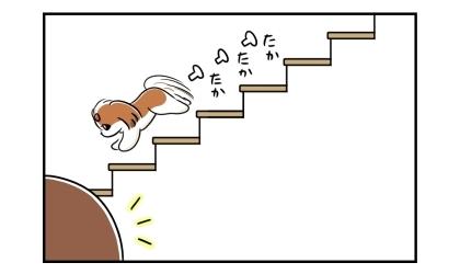 2階の寝室から1階のリビングへ、階段をたかたかと下りてくる犬