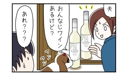 夫、おんなじワインあるけど?以前もそのPOPを見て同じワインを購入していた