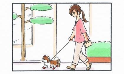 犬と散歩。住宅街の歩道を歩く