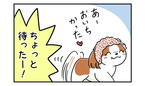 納豆ごはんを食べ終わった犬 ちょっと待ったー!