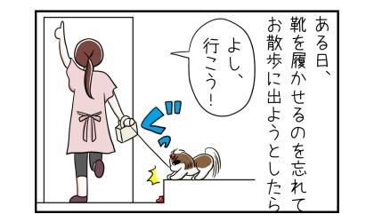 ある日、犬に靴を履かせるのを忘れてお散歩に出ようとしたら。玄関の上がり框の上から降りようとしない犬