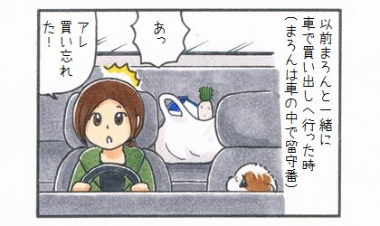 以前犬と一緒に車で買い出しに行った時(犬は車の中で留守番)、あつ、アレ買い忘れた!