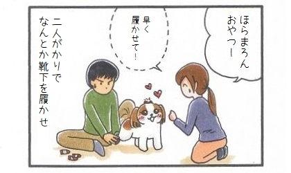 犬靴下に再挑戦!!-3
