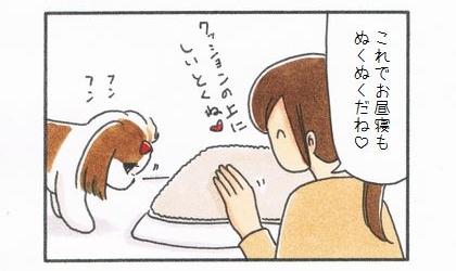 敷物1番乗り -まろんの毛布編--2