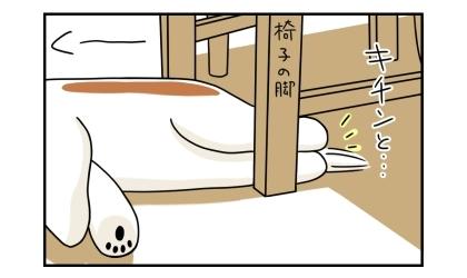 リビングの床で寝る犬の下半身。椅子の脚に両足をキチンと揃えている