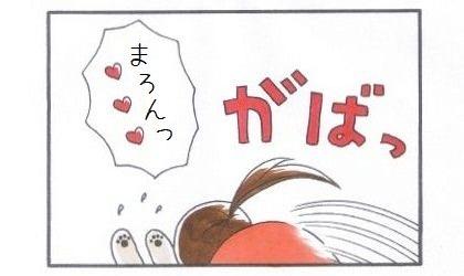 癒しまろん-4