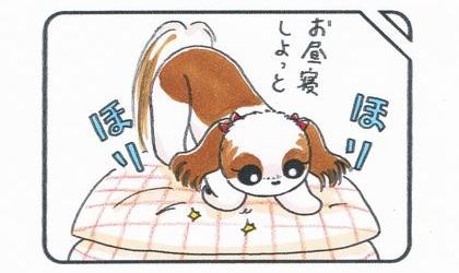 犬がお昼寝しようとクッションをほりほり