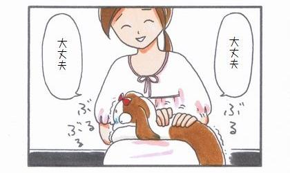 ビビリまろんの動物病院へGO!-合わせ技編--2