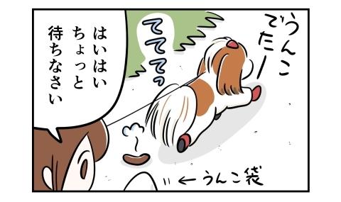 散歩中、うんこをした犬。はいはい、ちょっと待ちなさい