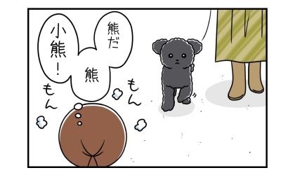 熊だ、熊、小熊!(テディベアカットの黒のトイプードル)もんもんとする飼い主