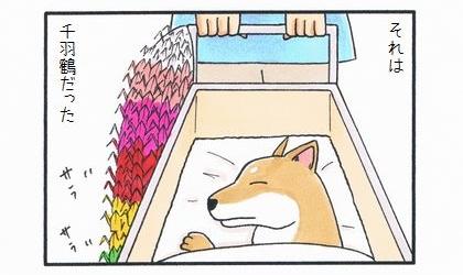 カートに乗った犬 ~みんなの祈り~-2