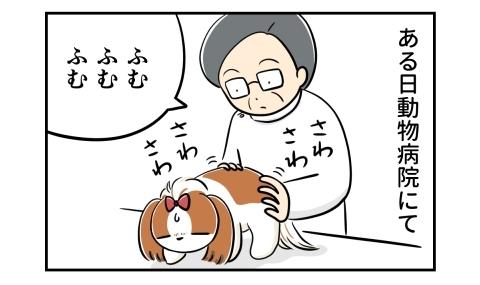 ある日、動物病院にて。獣医さんが犬を触診中