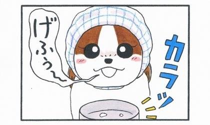 初めての犬用ミルク-3