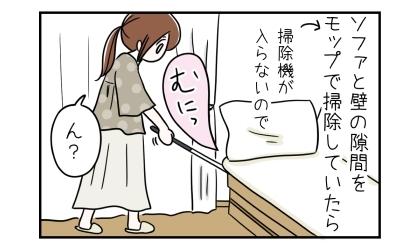 ソファと壁の隙間をモップで掃除していたら(掃除機が入らないので)、何か柔らかい手ごたえがあった