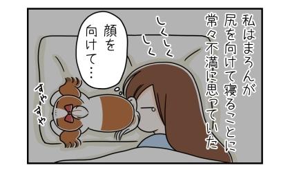 私は犬がお尻を向けて寝ることに常々不満に思っていた。顔を向けて…