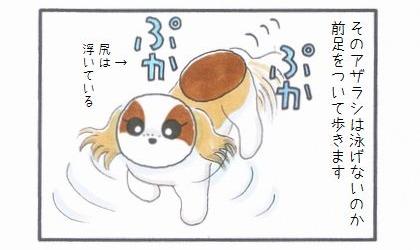 浴槽のアザラシ-2