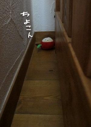 隙間で遊ばれたおもちゃ