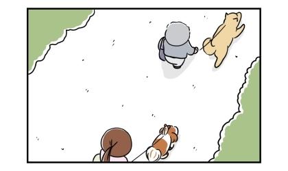 犬の散歩中。前を柴犬が歩いていた