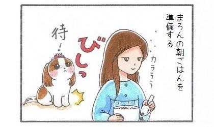 満腹になった目覚まし犬-1
