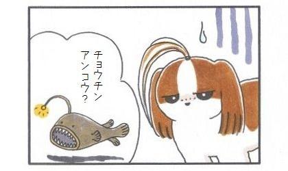 チョウチンアンコウ-4