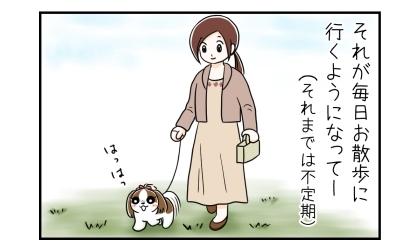 犬がうれションに困っていたが、毎日お散歩に行くようになって。散歩でおしっこをする犬