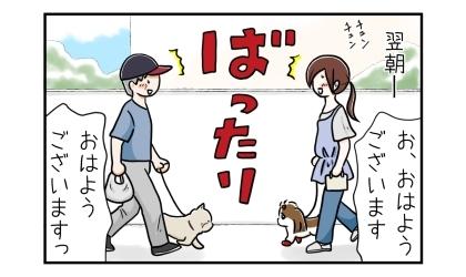 翌朝、犬の散歩に一時間早く出たのにいつものおじさんとばったり出会ってびっくり。おはようございます
