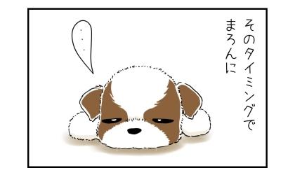 そのタイミングで犬に。目を開けたばかりの子犬