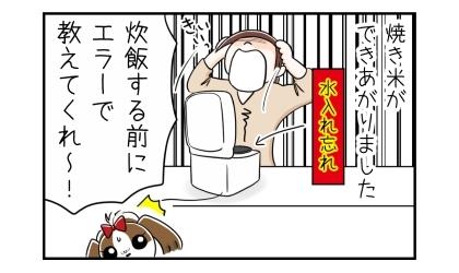 炊飯器に水を入れ忘れて焼き米が出来上がりました。炊飯する前にエラーで教えてくれ~!