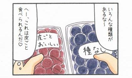 秋の味覚♪ぶどう-2