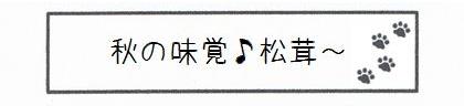 秋の味覚♪松茸~-0