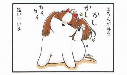 外耳炎のお話☆間接キッス-1