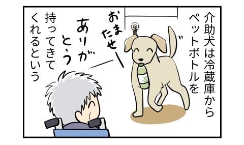 介助犬は冷蔵庫からペットボトルを持ってきてくれるという。おまたせー、ペットボトルをくわえる犬。ありがとう、車椅子の人