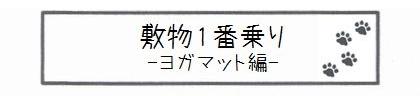 敷物1番乗り -ヨガマット編--0