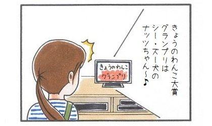 きょうのわんこ大賞グランプリにシー・ズー♪-2