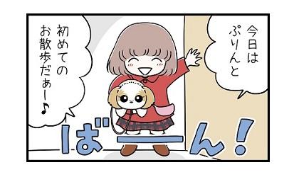 初めてのお散歩e 4コマ犬漫画 ぷりんちゃんねる
