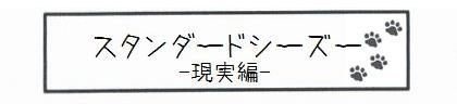 スタンダードシーズー -現実編--0