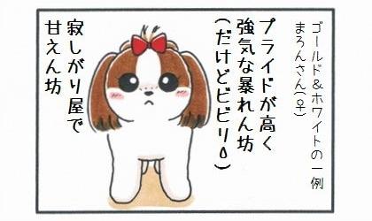 毛色でみる犬の性格-3