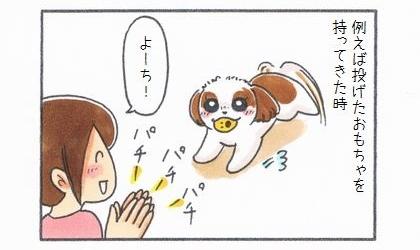 例えば犬が投げたおもちゃを持ってきた時。拍手して褒める