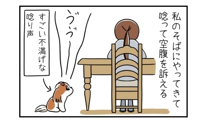 飼い主のそばにやってきて唸って空腹を訴える。すごい不満げな唸り声をあげる犬