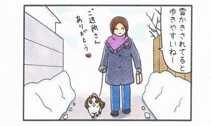 雪かきされた道-1