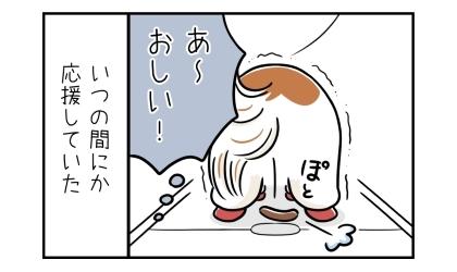 犬のうんこは側溝の穴に入らずに手前に落ちた。あ~、おしい!いつの間にか側溝の穴に入ることを応援していた