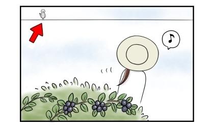 ブルーベリーの実を収穫せずに立ち去る。電線にはブルーベリーを狙う鳥