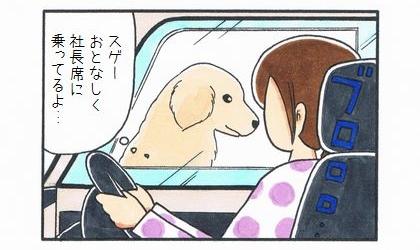社長席に乗った犬-2