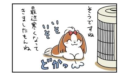そうですね、最近寒くなってきましたもんね。嬉しそうにストーブの前に座る犬
